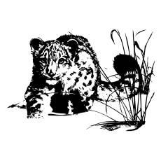Wandtattoo Afrika Leopard - Nr.4
