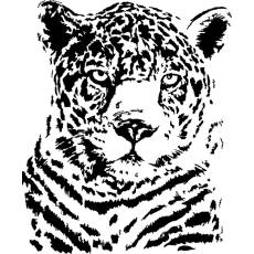 Wandtattoo Afrika Leopard - Nr.1