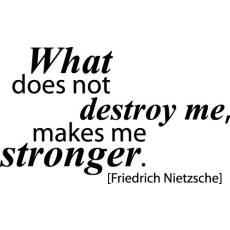 Wandtattoo Zitat Nietzsche What does not destroy me makes me stronger